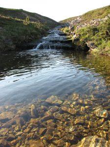 Spring_water